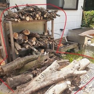 6か月前に伐採した超優良樫の木 薪ストーブ用 軽トラ1台分7000円