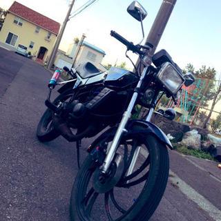 ヤマハ RZ50 2st 原付
