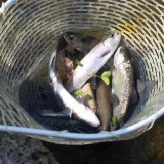 釣り好きな女友達探してます!仲良くしてくれる家族もほしいです!