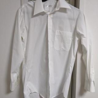 ミチコロンドンコシノ 形状安定シャツ カッターシャツ