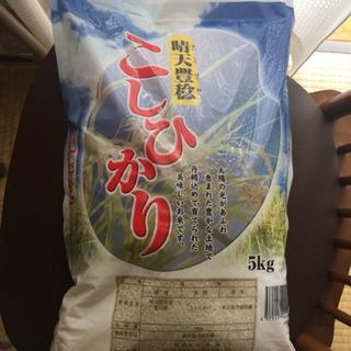 お米 10kg コシヒカリ