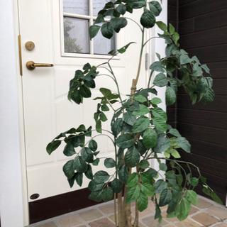 人工観葉植物 フェイクグリーン 大型