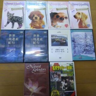癒やし系DVD 無料でどうぞ!