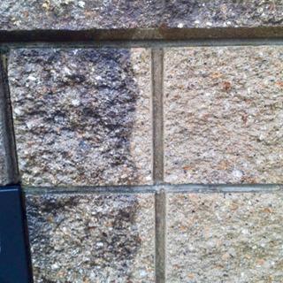 玄関周りやブロック塀の汚れお掃除いたします!