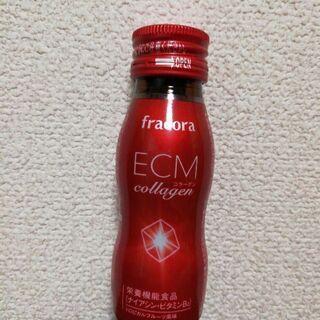 【 3本セット 】フラコラ ECMコラーゲン 賞味期限:2020...
