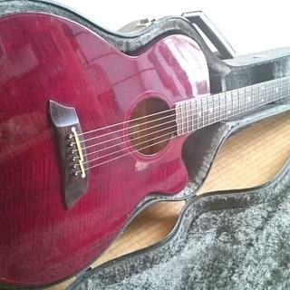 takamineギター