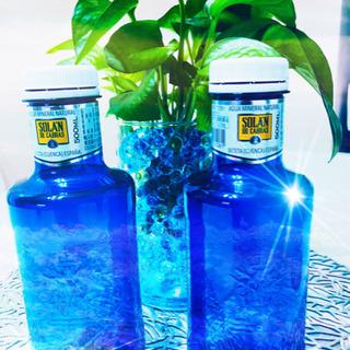 大人気✨ ソランデカブラス ブルー 2本セット♪