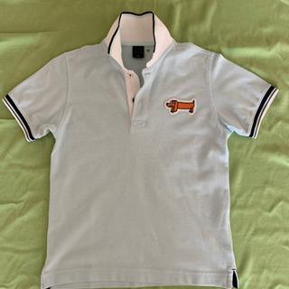 ポロシャツ(水色に犬のワンポイント)・120㎝