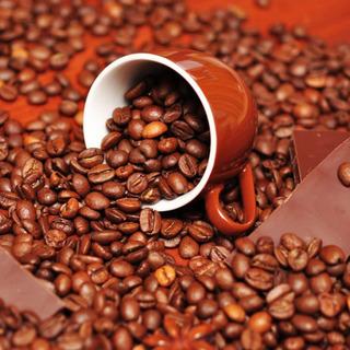 コーヒー好き集まれ!☕💭💕 色んなコーヒー飲み比べイベント!!