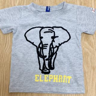 80 象Tシャツ