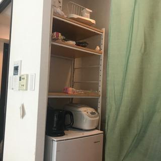 キッチン収納、冷蔵庫棚