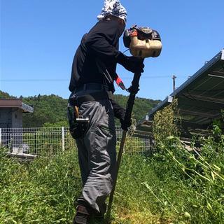 草刈り(除草)/支障木伐採/簡易剪定など作業できます!