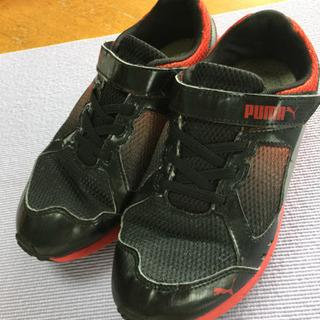 子供の靴。PUMA  22.5㎝