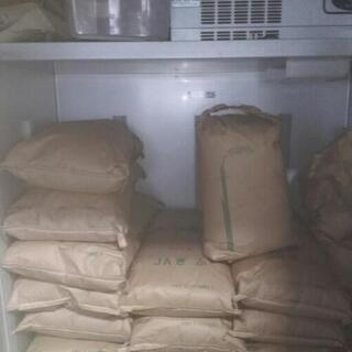 コシヒカリ玄米30kg 令和1年度産 岐阜県垂井町産のお米 ①