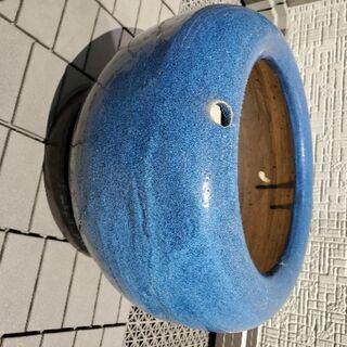 ①睡蓮鉢 ビオトープ 植木鉢