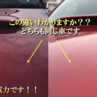 車のボディ磨き&コーティングサービス キャンペーン中! - 地元のお店