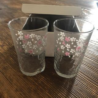 桜柄 ガラスグラス ペア