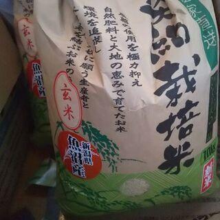 【値下げします!!】新潟魚沼産コシヒカリ10kg×4袋