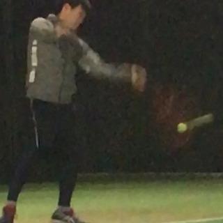 プラタナス 新規硬式テニスサークル