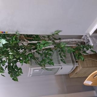 観葉植物(造花) オフィス・店舗インテリア用