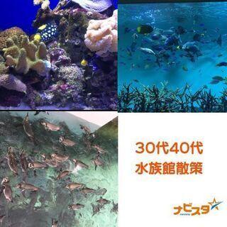 11/15 40~55 新江ノ島水族案散策