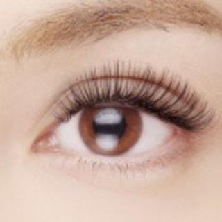 まつげエクステサロン❤︎Ele'na eye  beauty