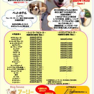 7月3日滑川市にてトリミング ・ペットホテル・トレーニングopen!
