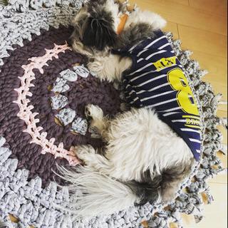 ズパゲッティ小物の編み物教室ご案内