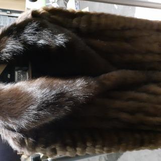 毛皮 ジャケット