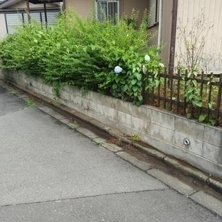 空家 自宅 庭 草刈いたします。