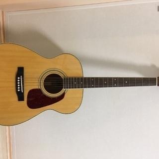 MORRIS/アコースティックギター/MF-251N