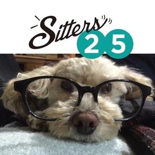 ペットシッターします!犬猫 Pet Sitter Dog wal...