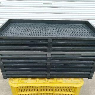 水稲育苗箱 マット 400枚 サンコー 農業 無料でお譲りします