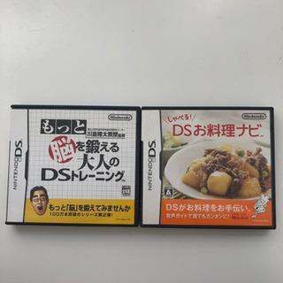 任天堂DS 2種類