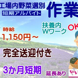 [富良野市]7月20日スタート!10月いっぱいくらいまで!時給1...