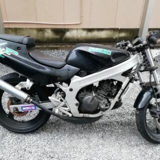 wolf125