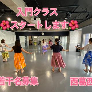 東葛西 大人気のフラガール〜虹を〜 10月 入門クラススタート!...