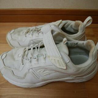 通学用 白スニーカー 22.5cm