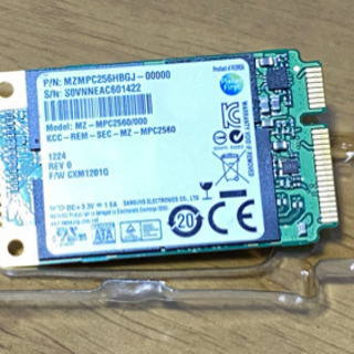 mSATA SSD256GB