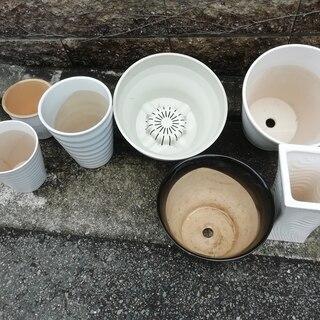 色々な植木鉢№14