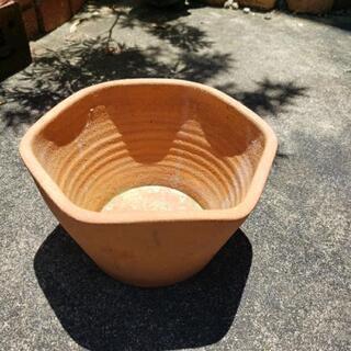 小さな植木鉢譲ります