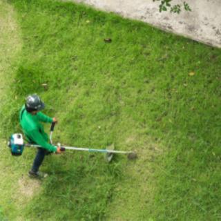 草刈り補助、草の片づけ、掃き掃除