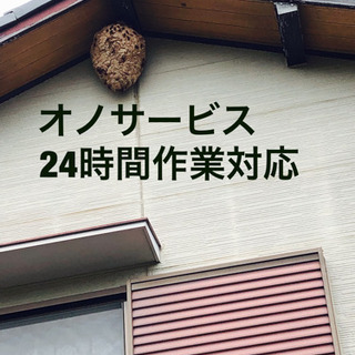愛知県全域対応、蜂駆除、ヘビ駆除、コウモリ駆除など何でも‼️ - 害虫/害獣駆除