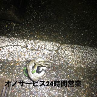 愛知県全域対応、蜂駆除、ヘビ駆除、コウモリ駆除など何でも‼️ - 名古屋市