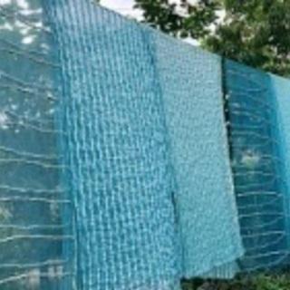 古民家で、藍の生葉染め体験【ランチ付きワークショップ】【残り2名!】