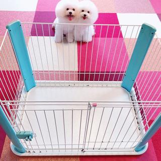 ペットケージ 犬 アイリスオーヤマ