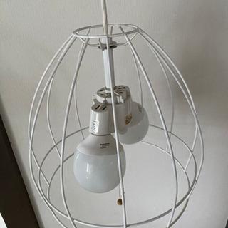 鳥かごデザイン 照明🥰
