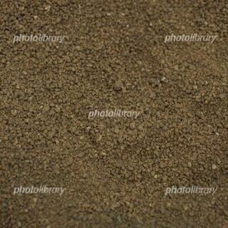 庭の真砂土