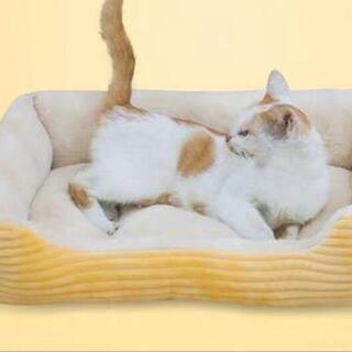 新品 洗える ベッド 小型犬 猫 ソファー 黄色 03