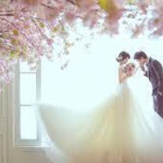 【限定・格安】ウェディング・結婚式ムービーの作成